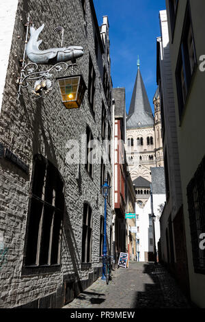 Auf dem Rothenberg street in the historic centre, old town, with church of Great St Martin, Cologne, North Rhine-Westphalia, Rhineland, Germany - Stock Photo