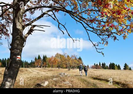 Hřebečná, Abertamy, Krusne hory, Ceska republika /  Abertamy, Hrebecna, Krusne hory mountains (Ore Mountains), Czech republic - Stock Photo