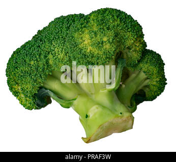 green cabbage broccoli isolated on white background - Stock Photo
