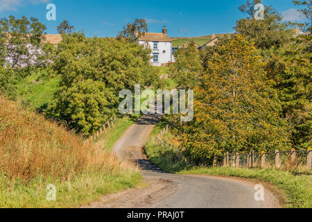 North Pennines AONB landscape, a whitewashed hill farm at Bank Top, Ettersgill, Upper Teesdale, County Durham, UK in bright autumn sunshine - Stock Photo