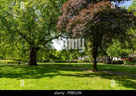 Brunswick Square gardens, a public park in Bloomsbury, central London, UK - Stock Photo