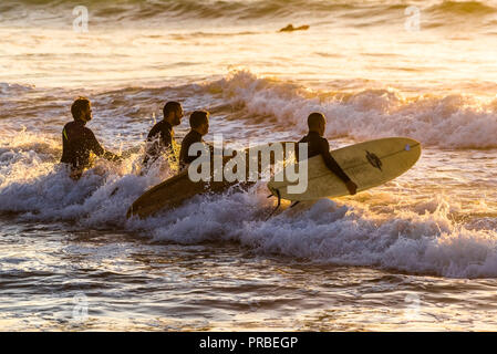 A group of surfers walking into the sea in the evening at Fistral in Newquay in Cornwall. - Stock Photo