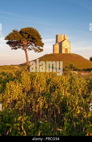 Pine tree and Romanesque St. Nicolas (Nicola) Church on earthen hill in fields of Prahulje, Nin, Dalmatia, Croatia - Stock Photo