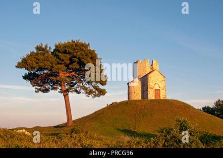 Pine tree and Romanesque St. Nicolas (Nicola) Church on earthen hill in Prahulje, Nin, Dalmatia, Croatia - Stock Photo