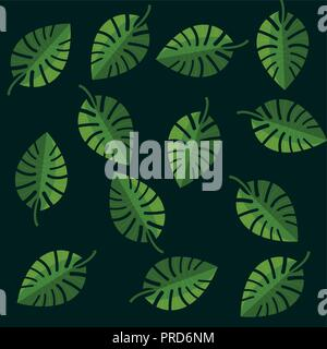leaves tropical palm monstera green background vector illustration