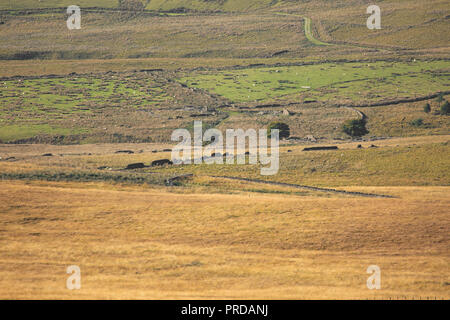Minimalist Landscape images of the West Pennine Moors near Bolton. Landscapes without sky. - Stock Photo