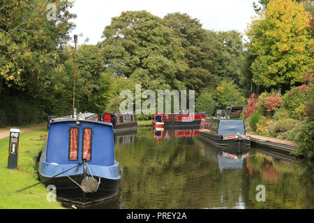 Narrow boats moored on the Staffordshire and Worcestershire canal near Kinver, Staffordshire, England, UK. - Stock Photo