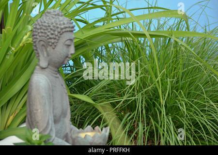 Buddha      Hintergrund - Stock Photo