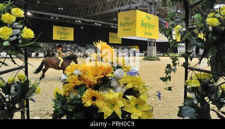Birmingham, UK. 3rd October, 2018. The Topspec arena. Horse of the year show (HOYS). National Exhibition Centre (NEC). Birmingham. UK. 03/10/2018. Credit: Sport In Pictures/Alamy Live News - Stock Photo