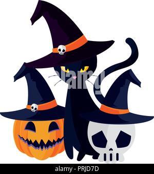 halloween black cat with pumpkin character vector illustration design - Stock Photo