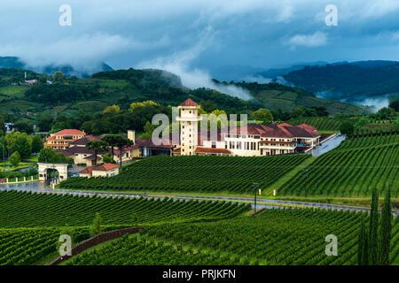 Winery Miolo, Vale dos Vinhedos, Rota da Uva e de Vinho, Grape and Wine Road, Bento Goncalves, Rio Grande do Sul, Brazil - Stock Photo