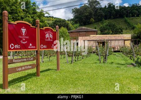 Winery Vallontano, Vale dos Vinhedos, Rota da Uva e de Vinho, Grape and Wine Road, Bento Goncalves, Rio Grande do Sul, Brazil - Stock Photo