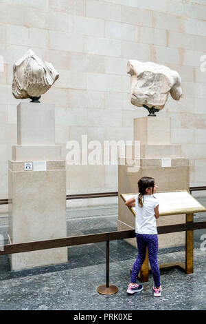 London England United Kingdom Great Britain Bloomsbury The British Museum human culture history interior gallery Elgin Parthenon Marbles Classical Gre - Stock Photo