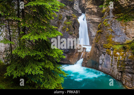 Johnston Creek is a tributary of the Bow River in Canada's Rocky Mountains. The creek is located in Banff National Park. - Stock Photo