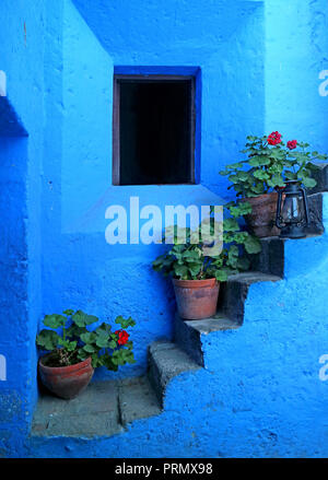 Impressive vivid blue colored staircase with the red flower planters in Monastery of Santa Catalina, Arequipa, Peru - Stock Photo