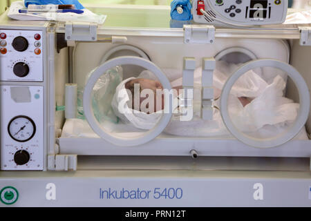 Incubator, childbirth, newborn, hospital, Czech Republic - Stock Photo