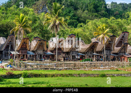 Traditional Toraja village, Rantepao, Tana Toraja, Sulawesi, Indonesia - Stock Photo