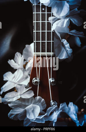 closeup photo of a ukulele neck against a dark background - Stock Photo
