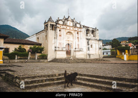 Stray dog walks up steps to a church in the main plaza of the small town of San Juan del Obispo, just outside Antigua, Guatemala - Stock Photo