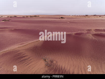 Pink sand in the namib desert, Namibe Province, Iona National Park, Angola - Stock Photo