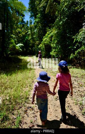 School aged children hiking through a forest holding hands, Palmerston Doongan Wooroonooran National Park, Queensland, Australia - Stock Photo