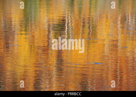 The reflection of autumn trees in moving water, creating an abstract and blurry background in the tones of golden, yellow, red, brown, green  and whit