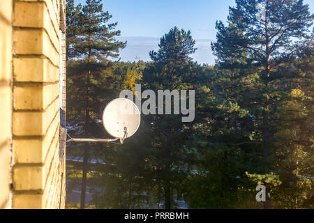 Satellite aerial antenna dish on brick wall over pine woods - Stock Photo