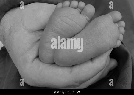Father holding baby's feet in his hand in black and white - Stock Photo