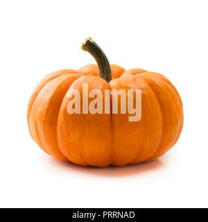 Fresh orange miniature pumpkin isolated - Stock Photo