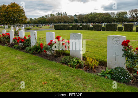 A fine show of red roses along a row of  war graves of servicemen and merchant mariners killed in World War 2 and buried in Acklam cemetary Middlesbro - Stock Photo