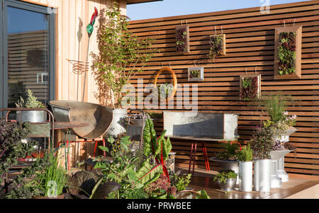 Decking area with vegetables and herbs growing in repurposed recycled containers, lettuce, chard, chives, sage, fennel, kitchen garden, sempervivum, O - Stock Photo