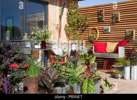 Decking area with vegetables and herbs growing in repurposed recycled metal containers, lettuce, chard, chives, kale, sage, fennel, kitchen garden, se - Stock Photo