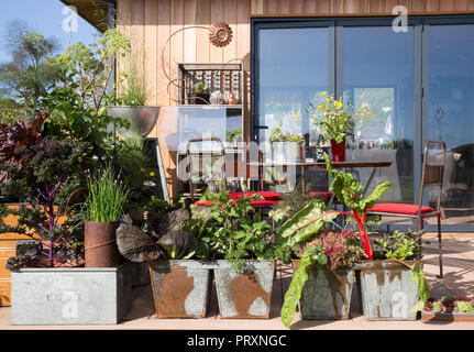 Outdoor garden office shed with glass patio doors, decking area with vegetables and herbs growing in repurposed recycled galvanised metal containers,  - Stock Photo