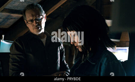 Prod DB © EON Productions - Mental Pictures / DR NANCY de Christina Choe 2018 USA avec Steve Buscemi et Andrea Riseborough - Stock Photo