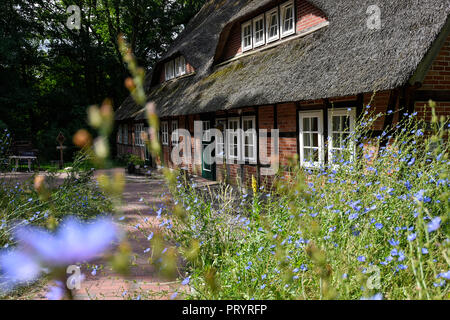 Germany, Lueneburger Heide, traditional half-timbered house - Stock Photo
