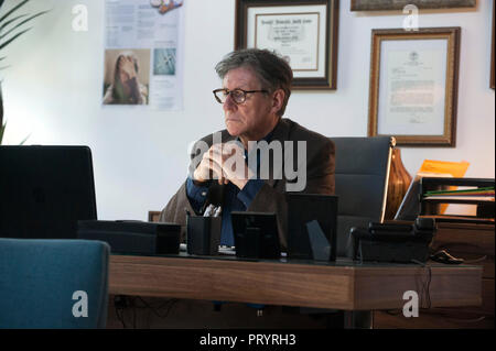 Prod DB © Reid Chavis - PalmStar Media - Windy Hill Pictures / DR HEREDITE HEREDITARY de Ari Aster 2018 USA Gabriel Byrne. horreur; horror; fantastiqu - Stock Photo