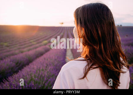 France, Valensole, back view of woman in front of lavender field at sunset - Stock Photo