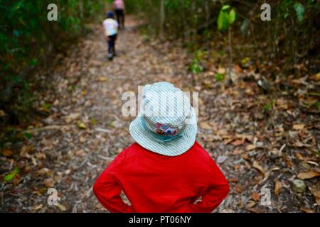 Kids walking through the woods, Dalrymple gap, QLD, Australia - Stock Photo