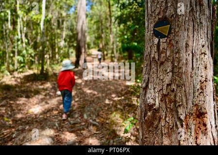 Kids walking through the woods, Dalrymple gap, QLD, Australia - Stock Photo