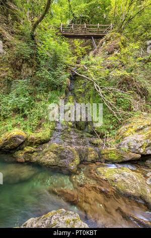 beautiful view in the woods with a river and wooden bridge - Stock Photo