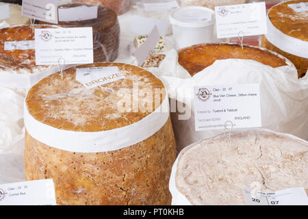 Cheese/cheeses on display at the World cheese awards - Stock Photo