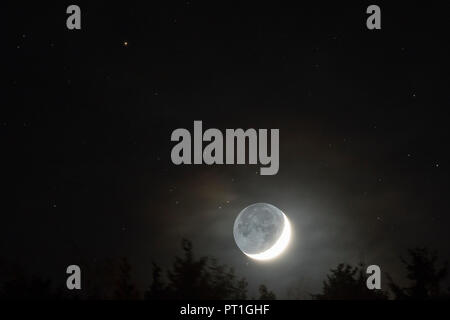 Germany, Hesse, Hochtaunuskreis, moon with grey light rising above trees with stars in background - Stock Photo