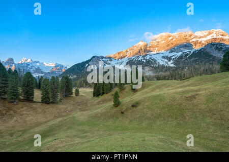 Prato Piazza / Plätzwiese, Dolomites, South Tyrol, Italy, The Cristallo massif and the Croda Rossa d'Ampezzo behind the Prato Piazza - Stock Photo