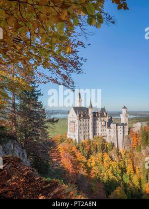 Neuschwanstein Castle, Schwangau, Ostallgäu, Schwaben, Bavaria, Germany - Stock Photo