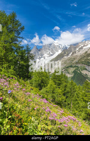 A view of the Mont Blanc Massif from the path to the Bertone Refuge during the Mont Blanc hiking tours (Ferret Valley, Courmayeur, Aosta province, Aosta Valley, Italy, Europe) - Stock Photo