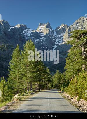 Monte Cinto, Haut Asco, Haute Corse, Corsica, France