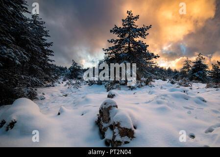 Snow in Limbara Mountain, Olbia Tempio Province, sardinia, italy, europe, - Stock Photo