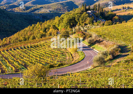 Greve in Chianti, Florence province, Tuscany, Italy, Farmhouse and vineyards at sunrise - Stock Photo