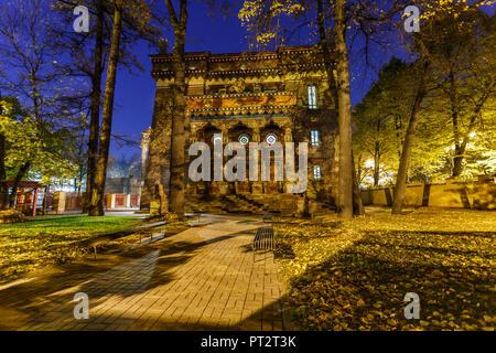 Building of St. Petersburg Buddhist temple 'Datsan Gunzehoyney'. Night view - Stock Photo