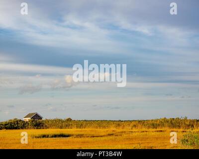 Marshes on bay along Westhampton, the Hamptons, Long Island, New York - Stock Photo